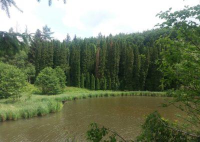 Arboretum ve Křtinách - pohled na rybník z vyhlídky