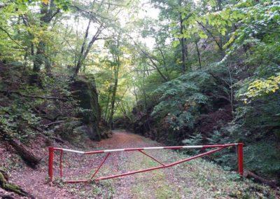 Gangloffova lesní cesta - jihovýchodní začátek