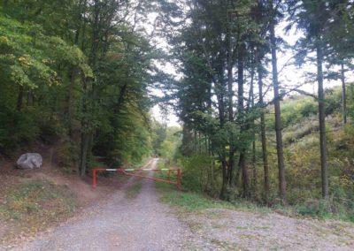 Gangloffova lesní cesta - začátek v Útěchově