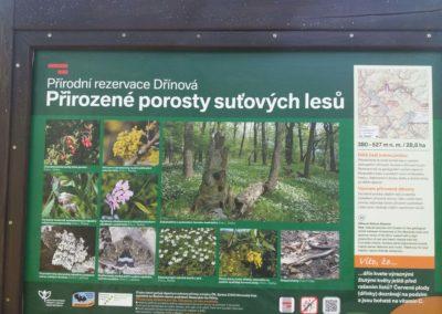 Infotabule k přirodní rezervaci Dřínová