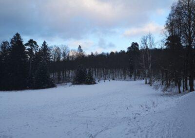 Konůpkova louka při lesní cestě Brněnka v zimě