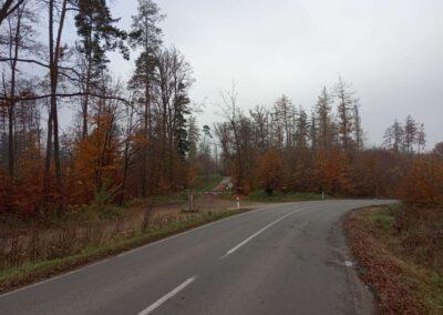 Lesní cesta Babidolská - pohled od silnice Útěchov - Vranov