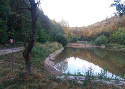 Lesní cesta Babidolská - Přírodní rezervace Babí doly