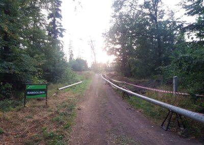 Lesní cesta Babidolská - východní začátek / konec u silnice Útěchov - Vranov