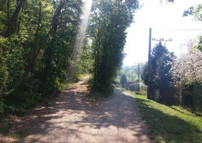 Lesní cesta Barbora a lesní cesta Dřínová - společný začátek / konec v Adamově