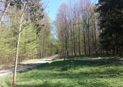 Lesní cesta Březinka - druhé označení cesty u silnice z Babic nad Svitavou do Křtin