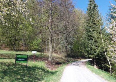 Lesní cesta Březinka - východní začátek / konec nedaleko vesnice Březina