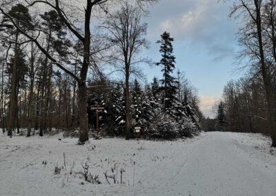 Zlámaný kříž u lesní cesty Brněnka v zimě