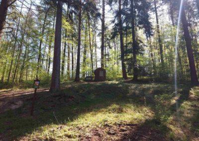 Lesní cesta Červená - Konšelův pomník