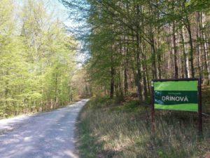 Začátek lesní cesty Dřínová u palouku nedaleko Babic nad Svitavou