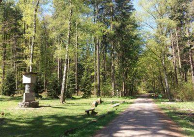 Lesní cesta Hradská - začátek u památníku