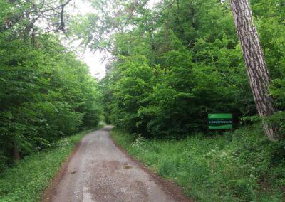 Lesní cesta K Hlinkovým dolům - začátek / konec u Habrůvky