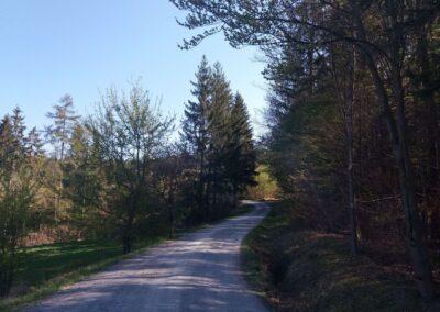 Lesní cesta Klepačovská - přichod k začátku / konci cesty u Olomučan