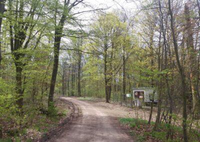 Lesní cesta Kroucená - začátek / konec ve Vranově