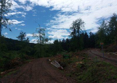 Lesní cesta Lámanka - začátek / konec při lesní cestě Šíbrnka