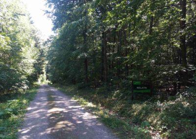 Lesní cesta Melatín - severní začátek