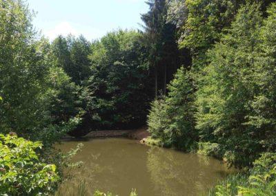 Lesní cesta Melatín - vodní nádrž