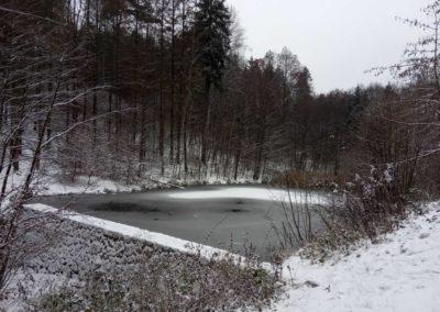 Lesní cesta Melatín - vodní nádrž v zimě - pohled zespodu