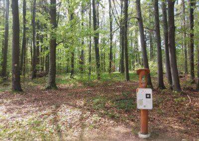 Lesní cesta Palaška - zastavení Sluneční stezky: Uran