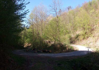 Lesní cesta Pod Jelencem - otočka cesty u potoku Skok