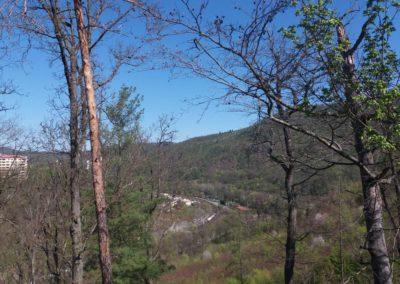 Lesní cesta Pod Jelencem - vyhlídka na okraj Adamova
