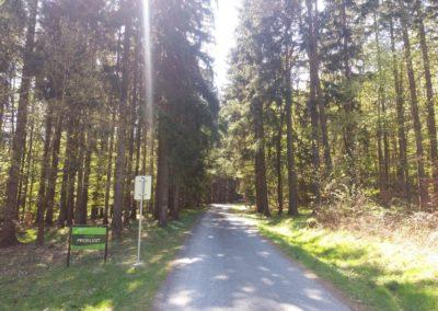 Začátek lesní cesty Proklest v Jedovnicích