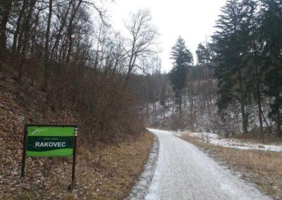 Lesní cesta Rakovec - jižní začátek / konec v zimě