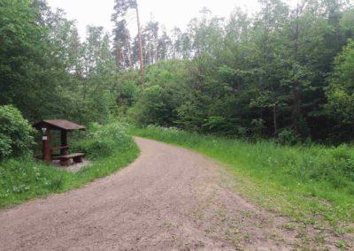 Lesní cesta Rakovec - přístřešek