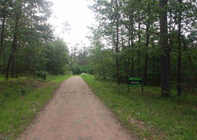 Lesní cesta Rakovec - severní začátek / konec