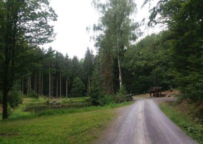 Lesní cesta Schindlerova - celkový pohled na retenční nádrž a odpočívadlo