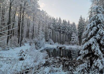 Lesní cesta Schindlerova - celkový pohled na retenční nádrž v zimě