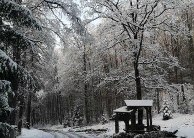 Lesní cesta Schindlerova - odpočívadlo v zimě