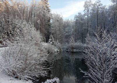 Lesní cesta Schindlerova - pohled na druhou retenční nádrž v zimě