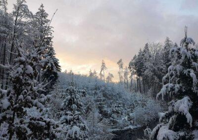 Lesní cesta Schindlerova - pohled na druhou retenční nádrž v zimě během západu slunce