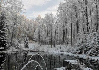 Lesní cesta Schindlerova - pohled na horní retenční nádrž v zimě