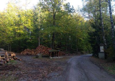 Lesní cesta Schindlerova - pohled na památník vpravo a odpočívadlo