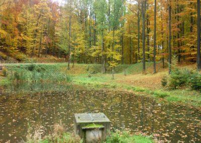 Lesní cesta Schindlerova - pohled na retenční nádrž