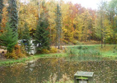 Lesní cesta Schindlerova - pohled na retenční nádrž a studánku