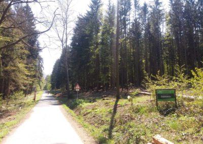 Lesní cesta Šíbrnka - začátek / konec v Rakoveckém údolí v Jedovnicích