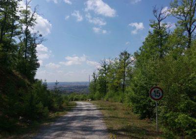 Lesní cesta Šumbera - první výhled na Brno a značka omezující rychlost