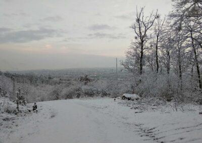Lesní cesta Šumbera - výhled na Brno v zimě, autor Martin Šerák