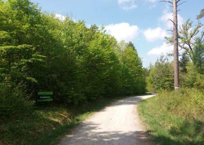 Lesní cesta Šumbera - začátek / konec u Kopanin