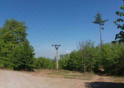 Lesní cesta Šutrovaná