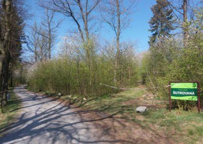 Lesní cesta Šutrovaná - začátek u Babic nad Svitavou