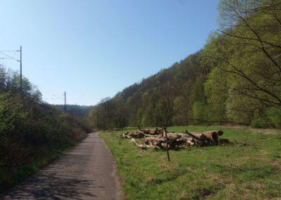 Lesní cesta Svitavská - železniční trať