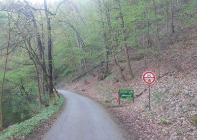 Lesní cesta Svitavská - začátek / konec u Adamova