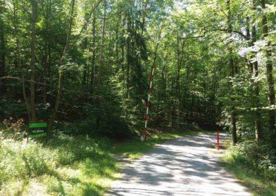 Začátek / konec lesní cesty Vojanka na severu nedaleko Útěchova