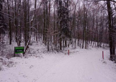 Zimní začátek / konec lesní cesty Vojanka na severu nedaleko Útěchova