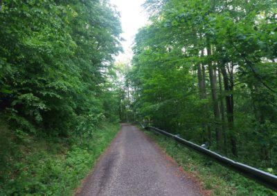 Lesní cesta Vranovská - neobvyklá svodidla
