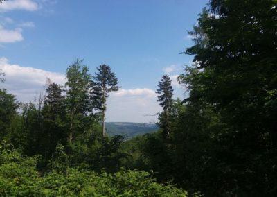 Lesní cesta Vranovská - výhled na křtinské údolí